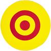 """10"""" Target Spot"""