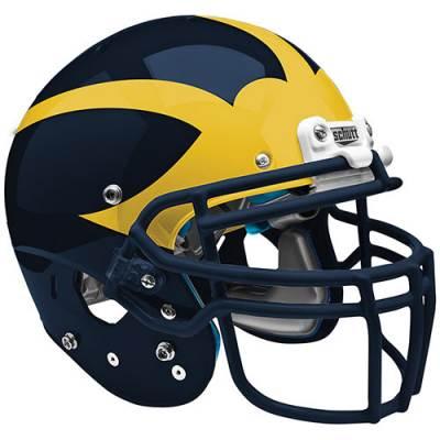 Wing Helmet Decals Main Image