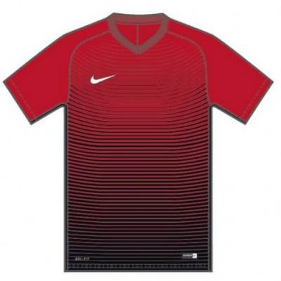 Nike SS Precision IV Jersey Main Image