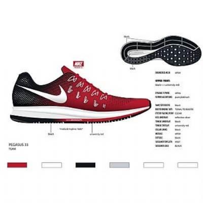 Nike Air Zoom Pegasus 33 Shoes Main Image