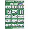Body Ball Poster Set