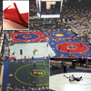 High School/Collegiate Wrestling Mats