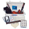 Softball Cooler Kit with Leather Gloves