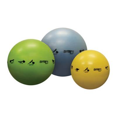 Smart Stability Balls Main Image