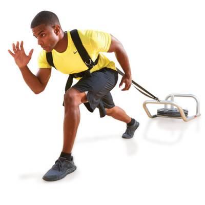 Low Push/Pull Training Sled Main Image