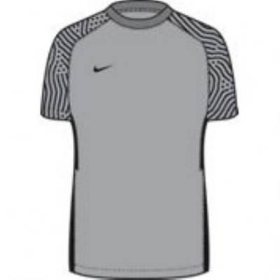 Nike SS Dry Sleeve II Jersey Main Image