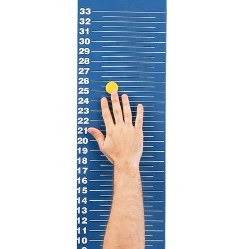 Magnetic Jump Amp Reach Board Bsn Sports