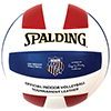 Spalding AAU Official Leather Volleyball